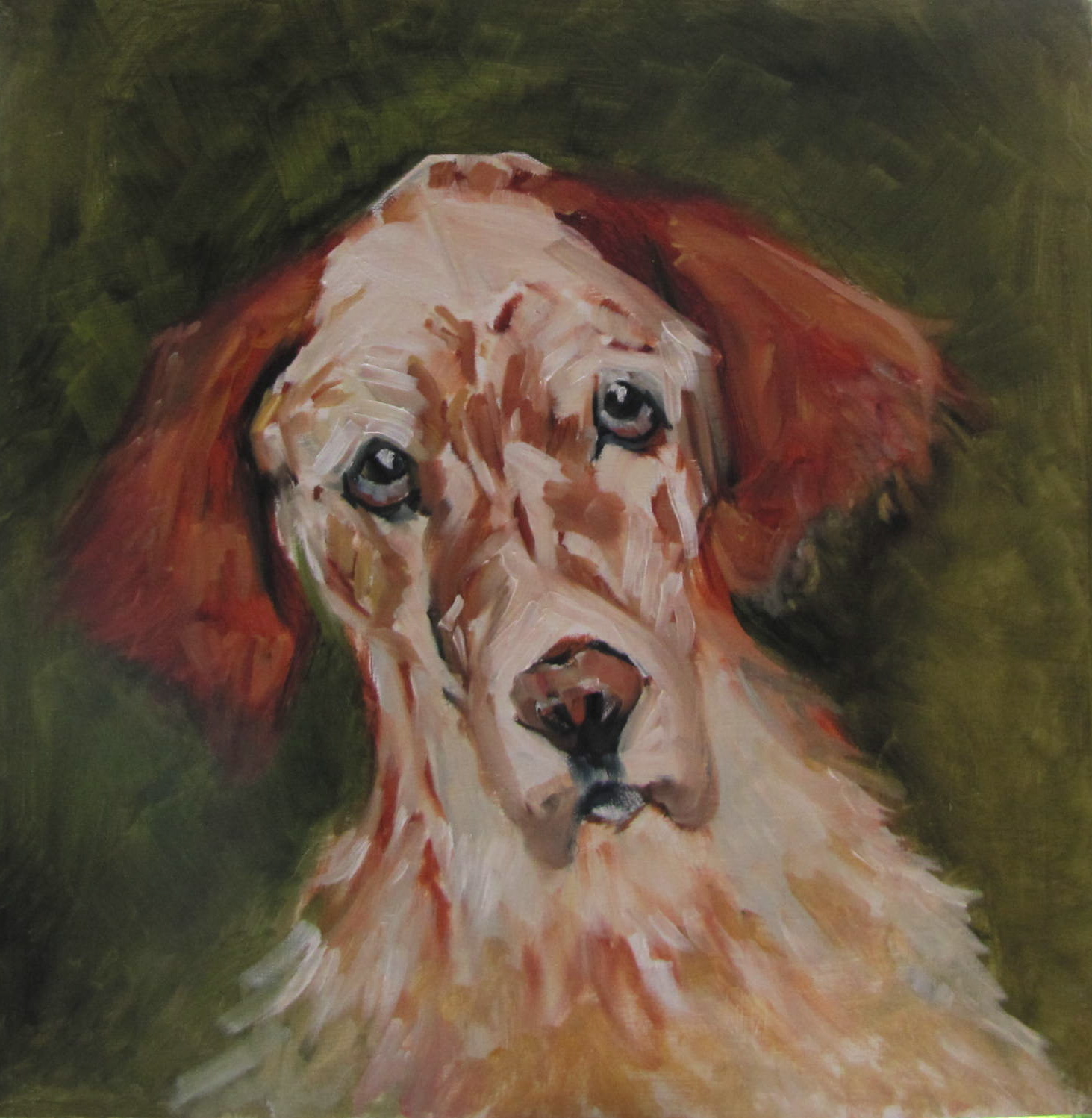 """Rusty  17.5x17.5  animal  oil sold #375"" original fine art by Christine Holzschuh"