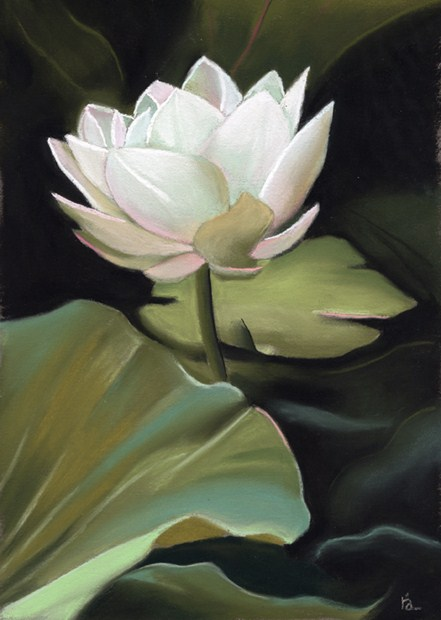 """Lotus Flower"" original fine art by Ria Hills"