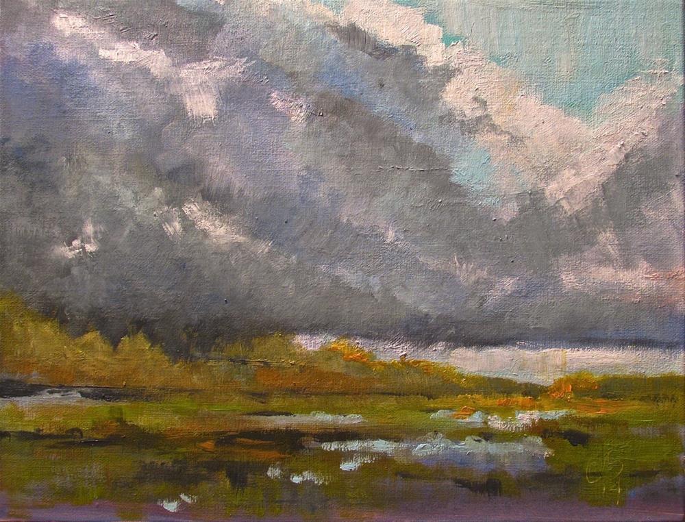 """""""Salt Marsh in Shadow"""" original fine art by Aurelio Saiz"""