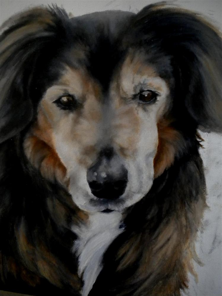 """Petey"" original fine art by Hilarie Johnson"
