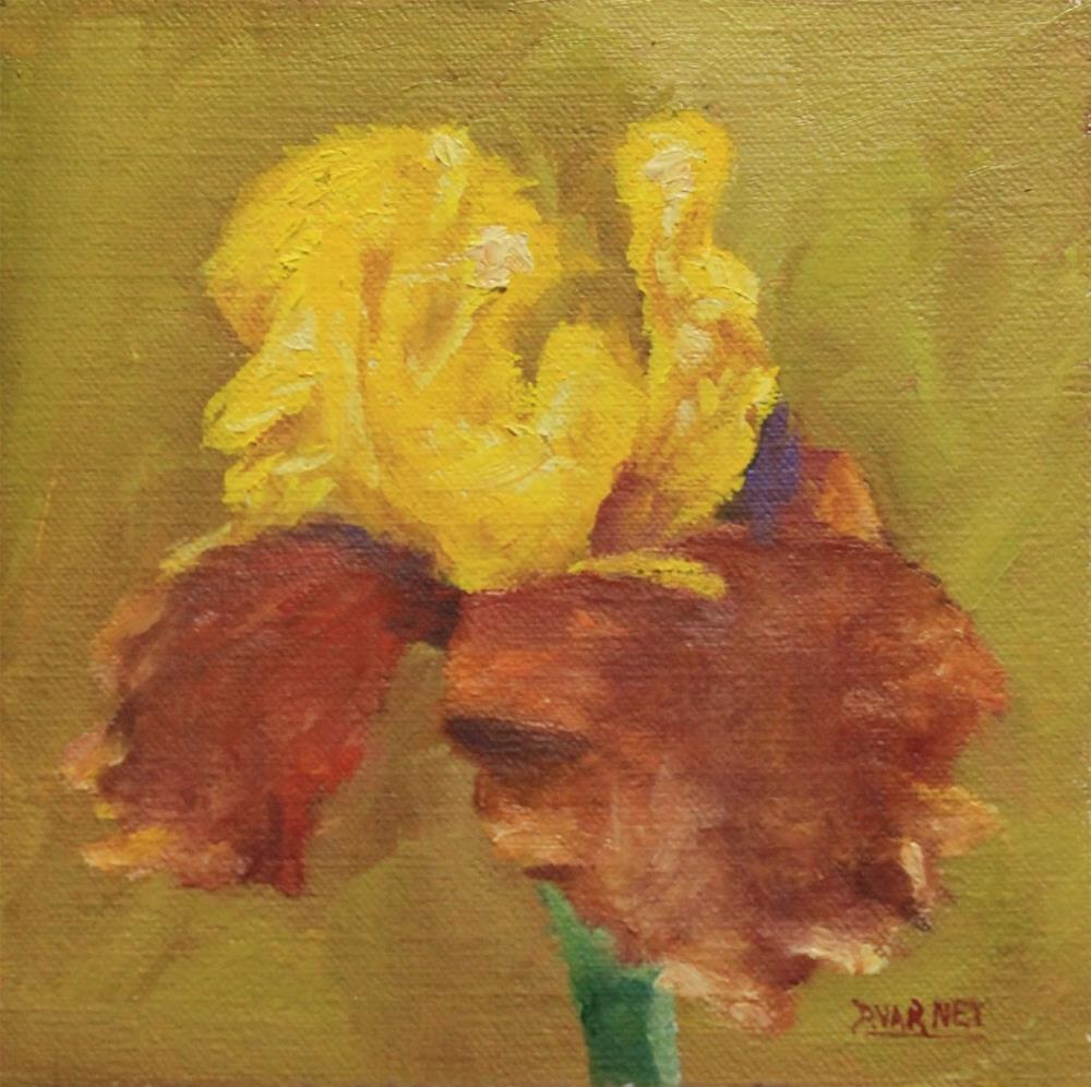 """Iris"" original fine art by Daniel Varney"