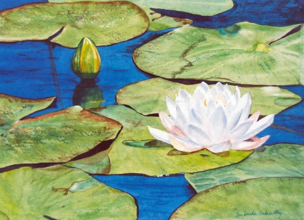 """Waterlily"" original fine art by Susan Duda"
