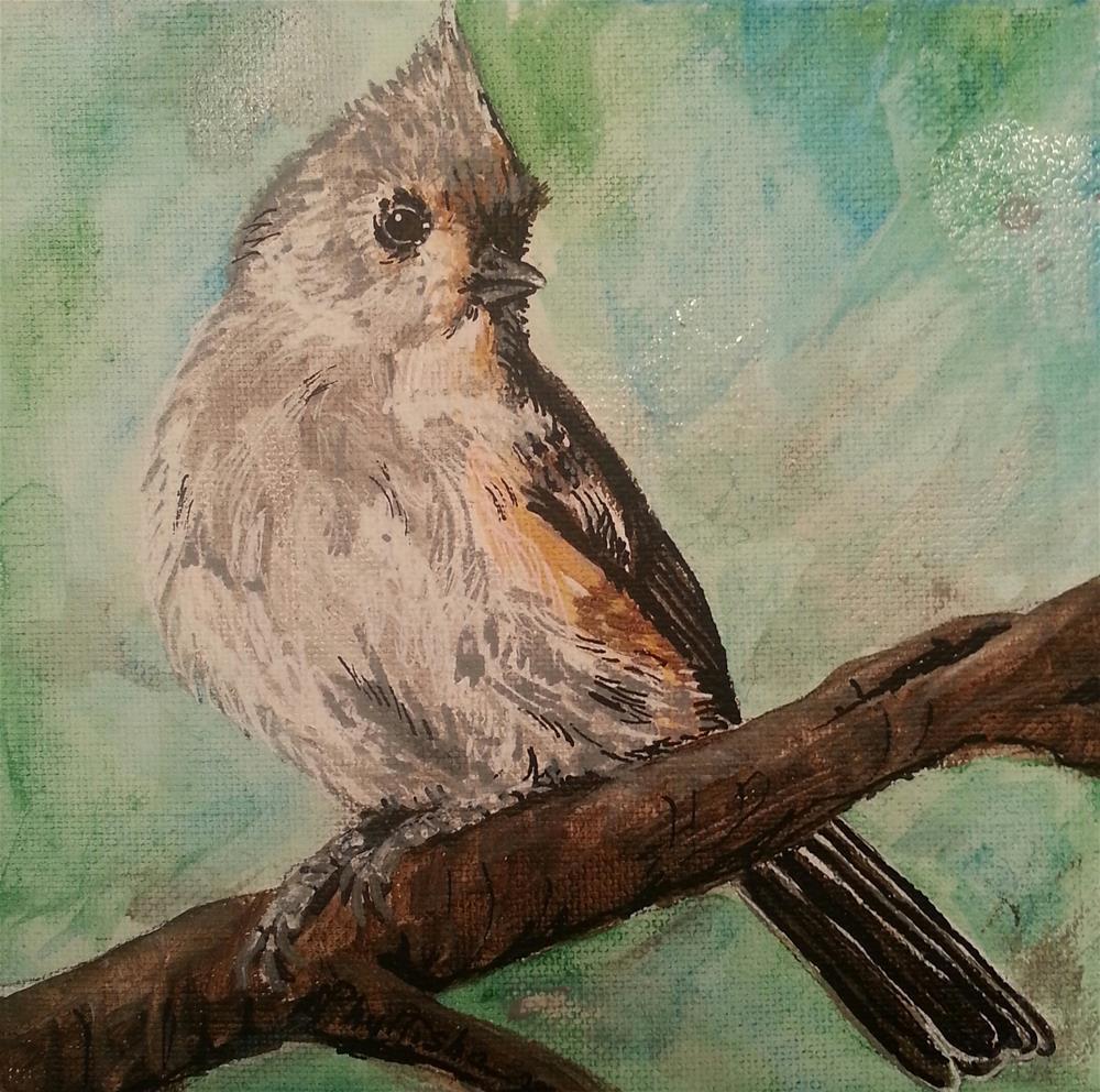 """TUFTED Titmouse"" original fine art by Phyllisha Hamrick"
