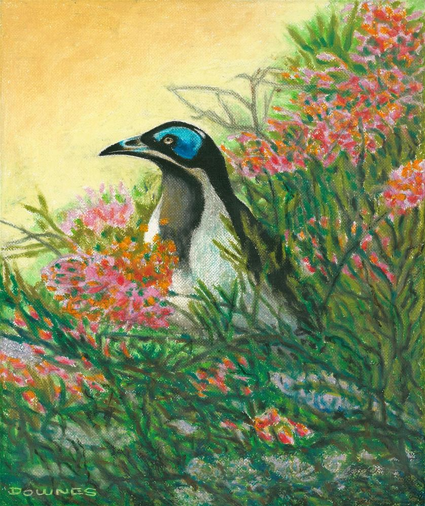 """152 BLUE-FACED HONEREATER"" original fine art by Trevor Downes"