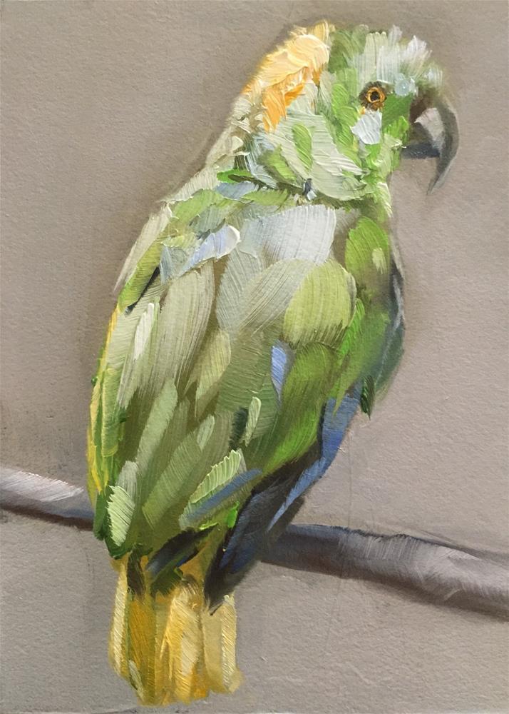 """Amazon Parrot"" original fine art by Gary Bruton"