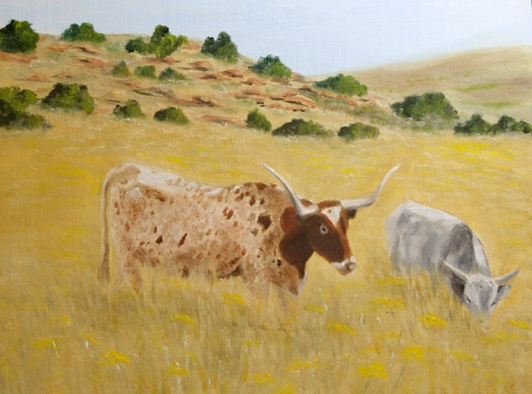 """Wild in the Wichita Mountains"" original fine art by Mary Datum"