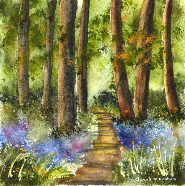 """Bluebell Pathway"" original fine art by Janet Graham"