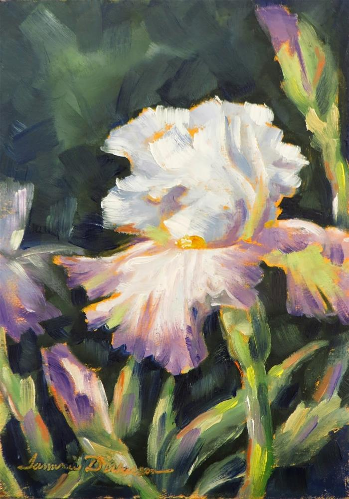 """Ruffled White and Lavender Iris"" original fine art by Tammie Dickerson"