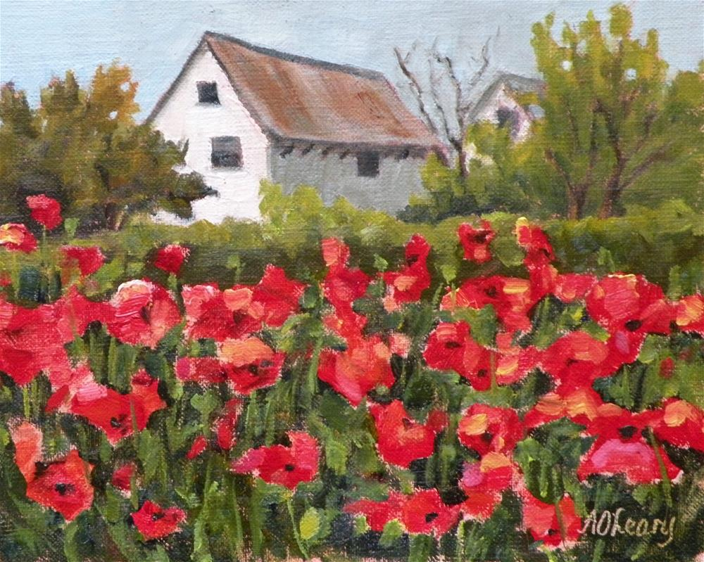"""Lone Star Blossoms"" original fine art by Alice O'Leary"