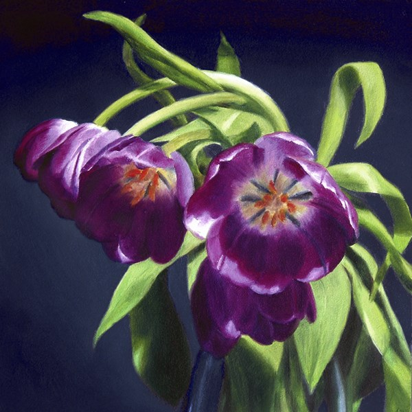 """Tulips on Blue"" original fine art by Nance Danforth"