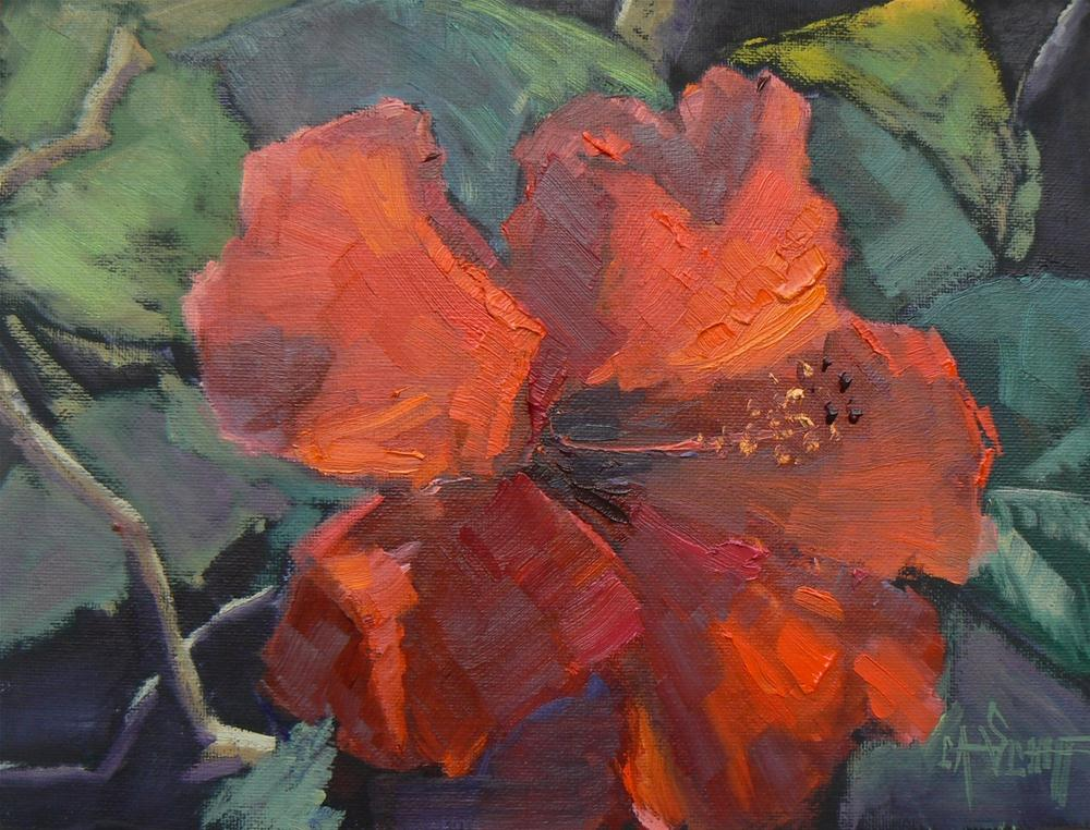 """Daily Painting, Floral, Red Hibiscus 6x8"" original fine art by Carol Schiff"