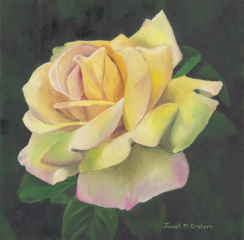 """Yellow Rose"" original fine art by Janet Graham"