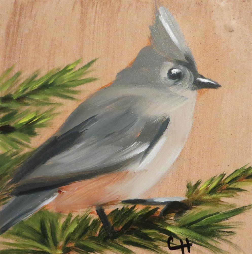 """""""Tufted Titmouse"""" original fine art by Claire Henning"""