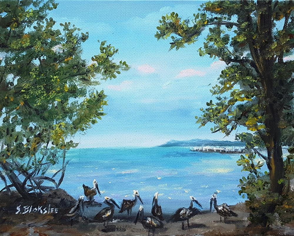 """""""Key West Pelicans"""" original fine art by Sissy Blakslee"""
