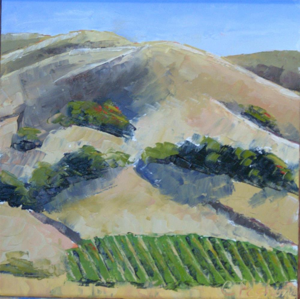 """Napa Vineyards"" original fine art by Carol Pighin"