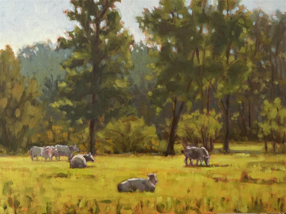 """In a Sunlit Field"" original fine art by Colleen Parker"