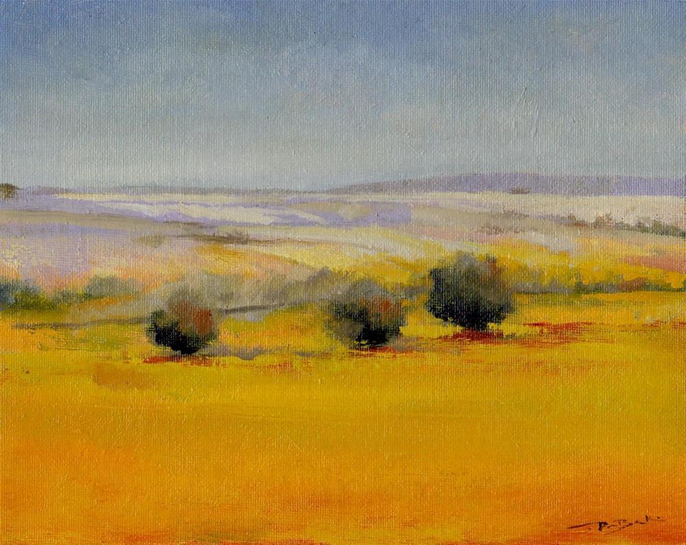 """""""NC land"""" original fine art by V. DeBak"""