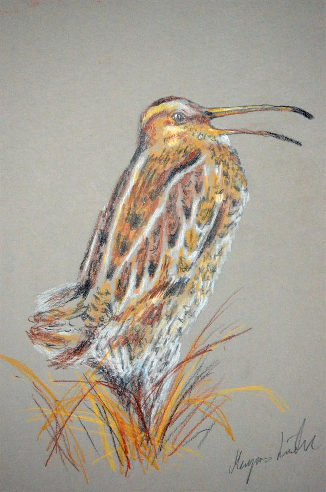 """Great Snipe"" original fine art by Magnus Lindblom"