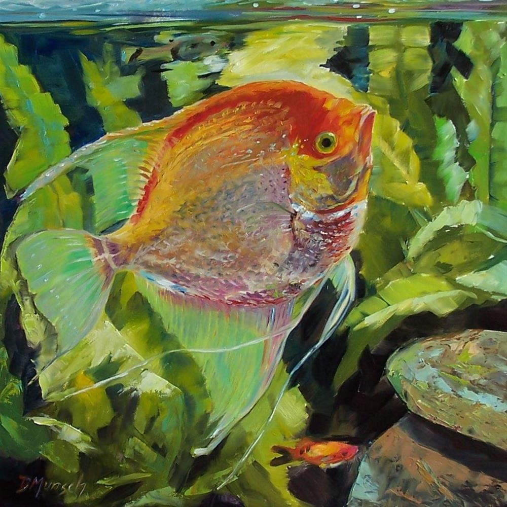 """Angel Fish"" original fine art by Donna Munsch"