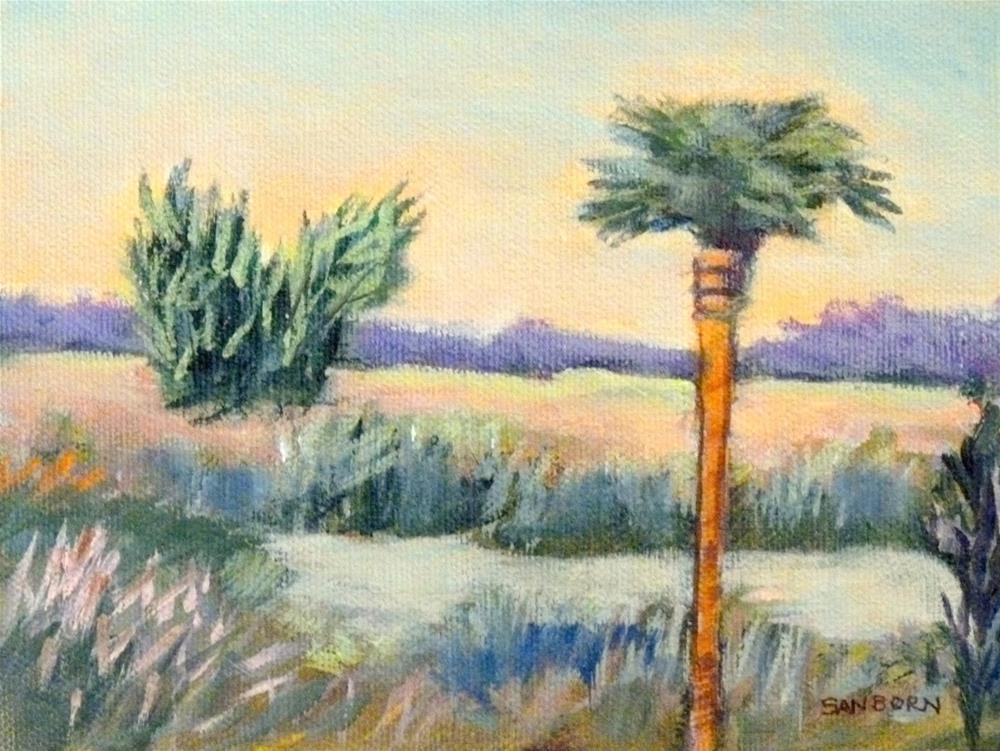 """""""Everglades Palm"""" original fine art by Jo-Ann Sanborn"""
