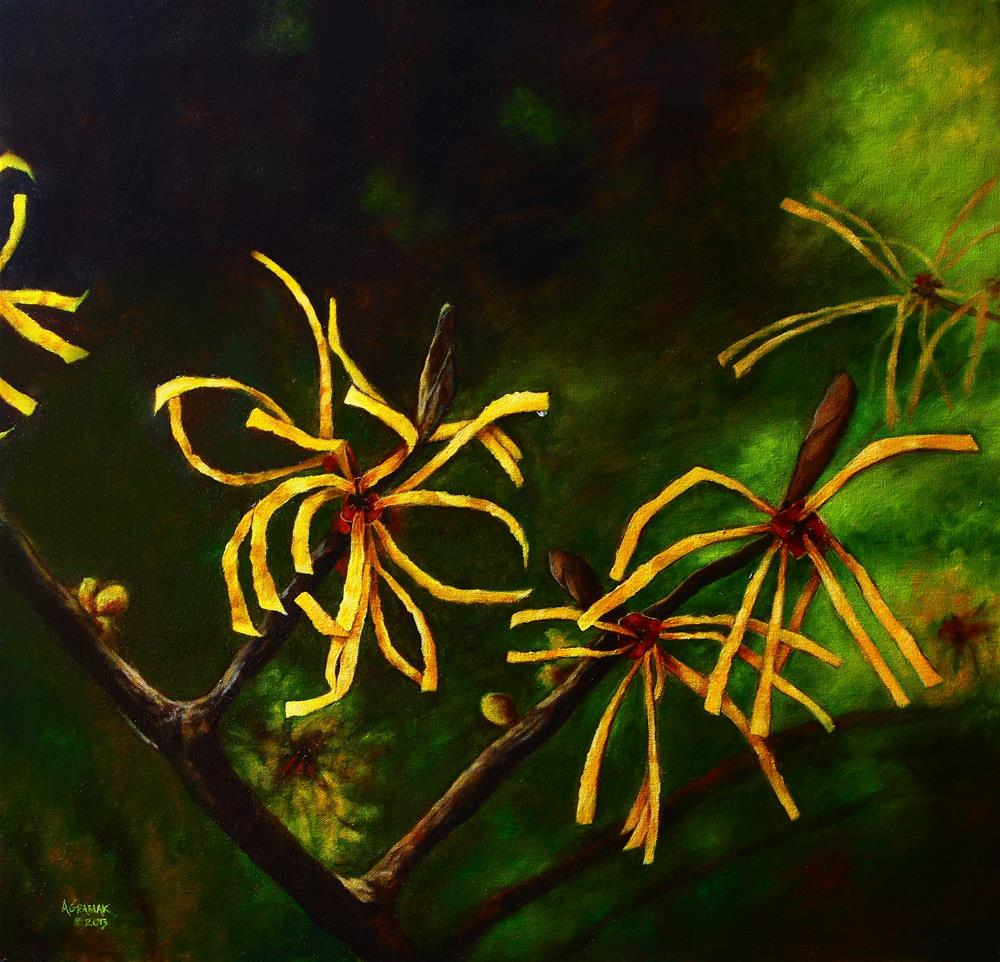 """Witchhazel"" original fine art by Aaron Grabiak"