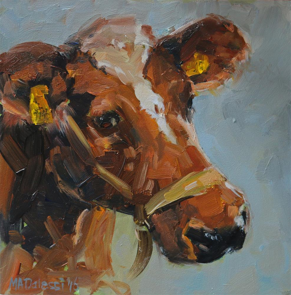 """Dutch cow"" original fine art by Miranda Dalessi"