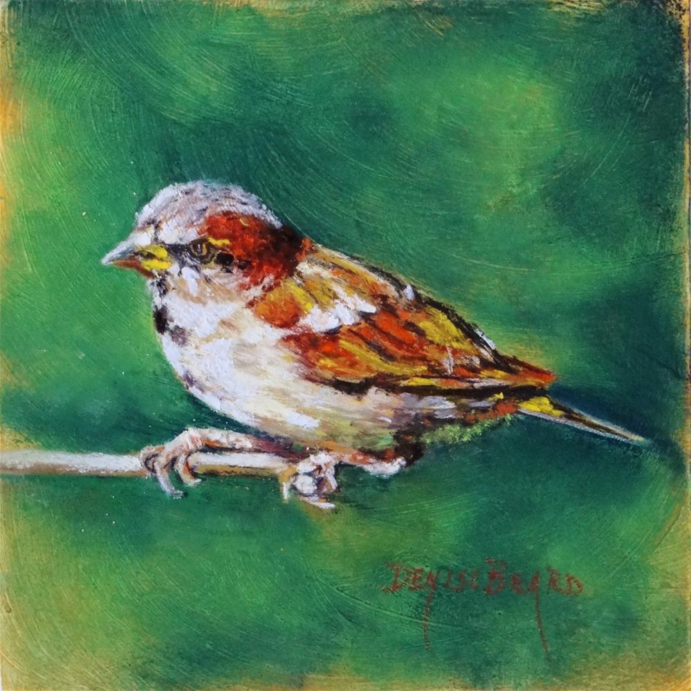 """Lil' Sparrow"" original fine art by Denise Beard"