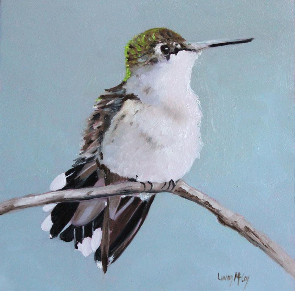 """Beaming, Hummingbird Oil Painting, Linda McCoy"" original fine art by Linda McCoy"
