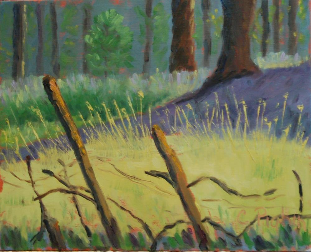 """Broken Fence"" original fine art by Carol Pighin"