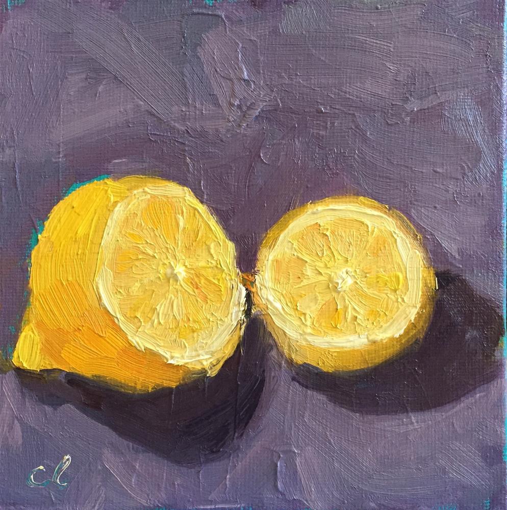 """Lemon half"" original fine art by Cheree Apalona Lueck"
