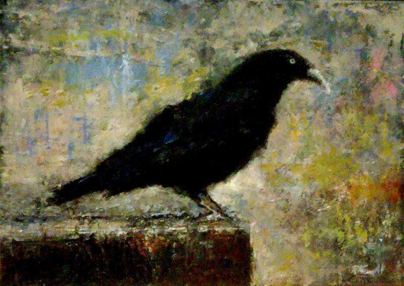 """Scouting Raven"" original fine art by Bob Kimball"