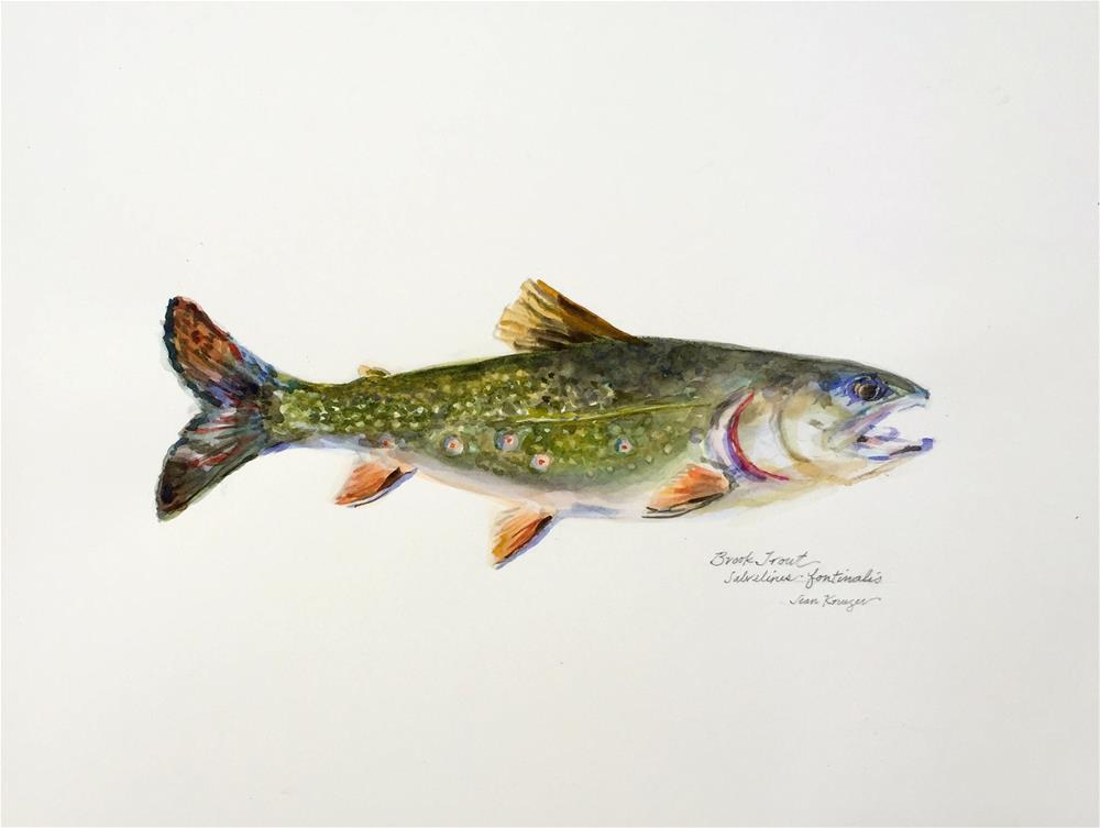 """Brook Trout"" original fine art by Jean Krueger"