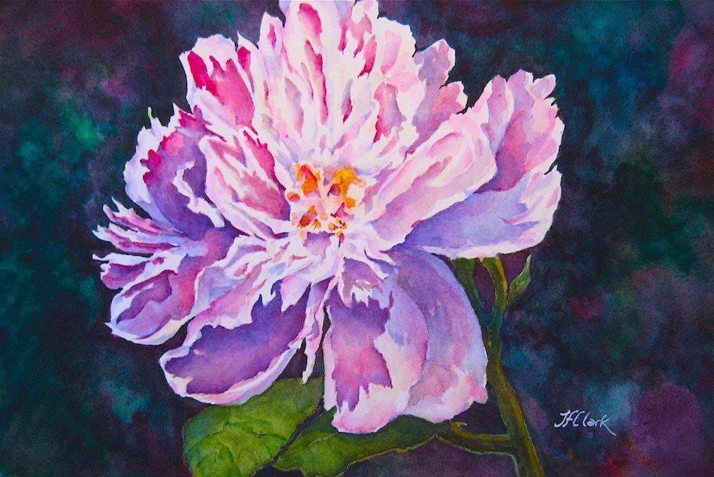 """Ruffles and Flourishes"" original fine art by Judith Freeman Clark"