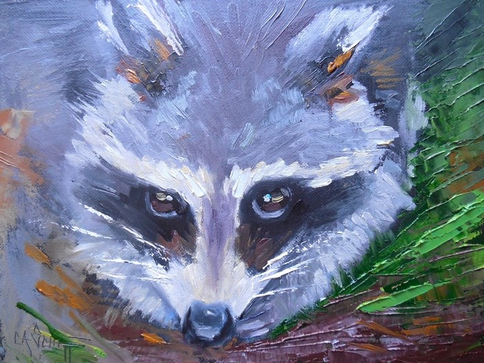 """Wildlife Painting, Daily Painting, Small Oil Painting, The Bandit by Carol Schiff, 6x8 Oil"" original fine art by Carol Schiff"
