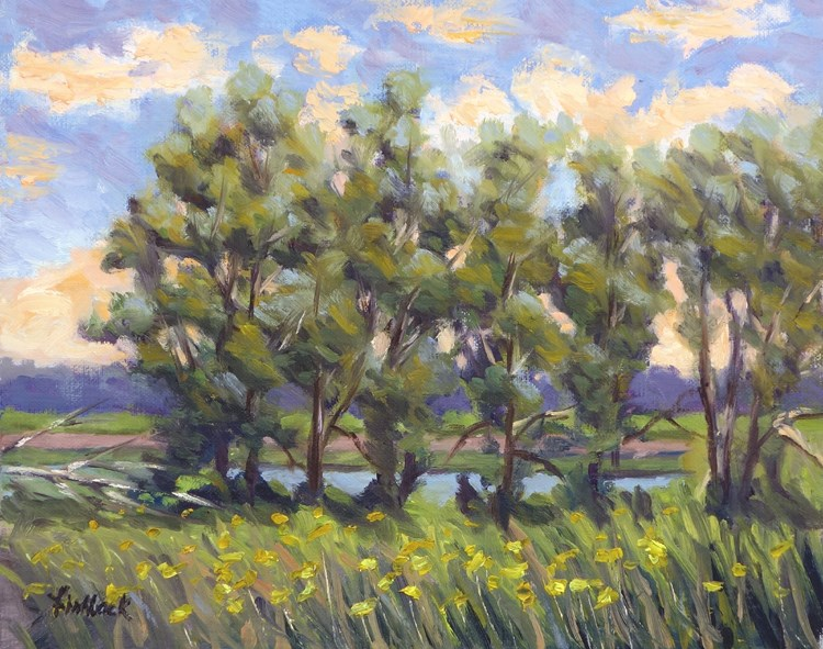 """Wetland View"" original fine art by Daniel Fishback"