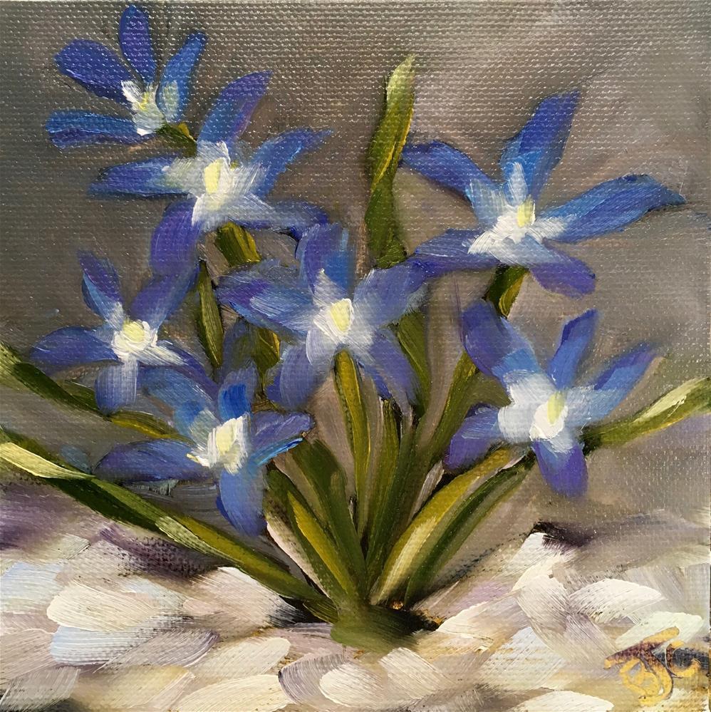 """""""Chinodoxa"""" original fine art by Bobbie Cook"""