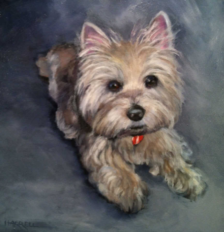 """Weston"" original fine art by Sue Harrell"