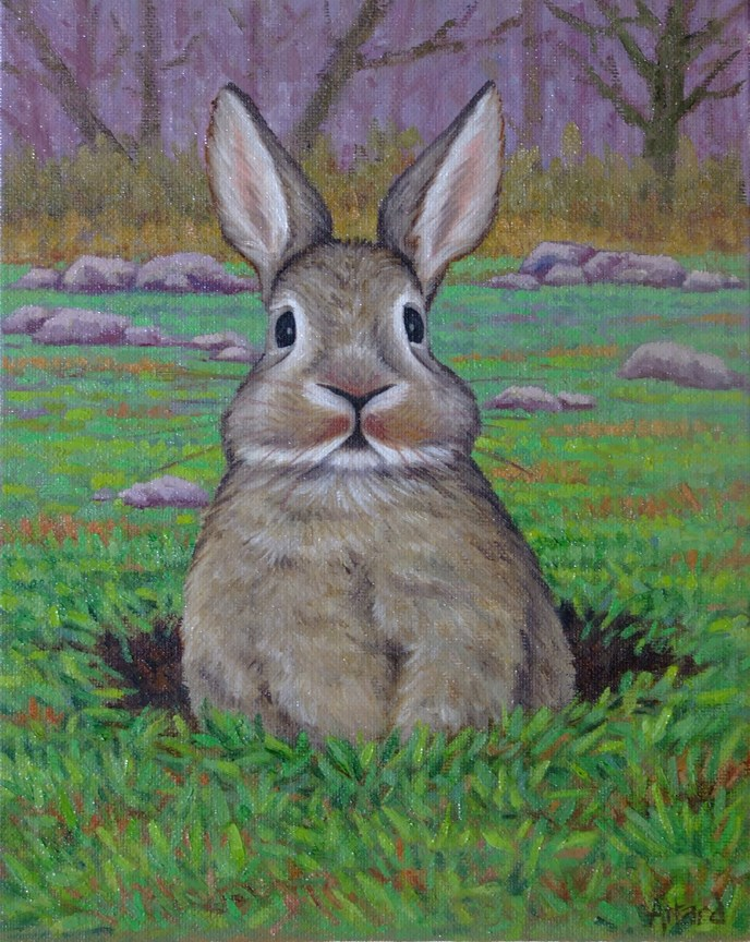 """Rabbit In A Burrow"" original fine art by Mark  Attard"