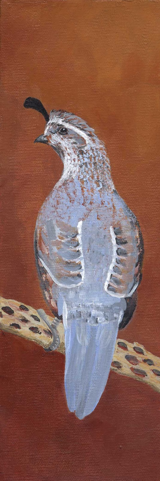 """Gamble Quail Female"" original fine art by Michelle Wolfe"