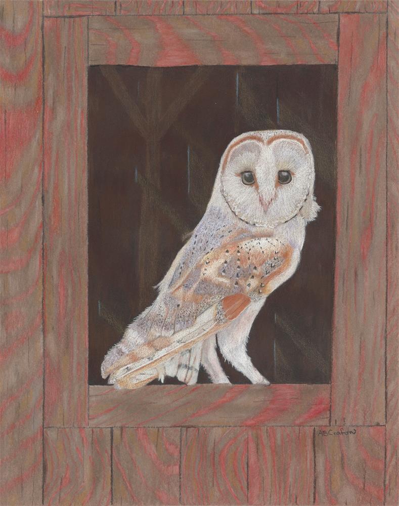 """Barn Owl In Residence"" original fine art by Arlene Crafton"