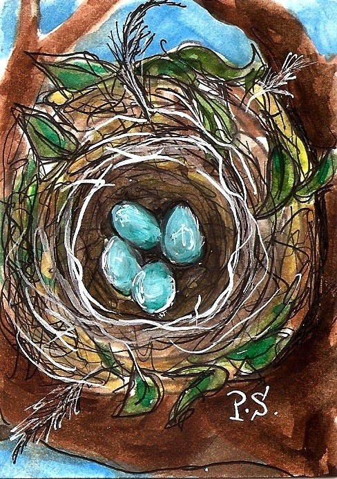 """ACEO Robins Eggs Blue in Nest in Tree Springtime Miniature by Penny StewArt"" original fine art by Penny Lee StewArt"