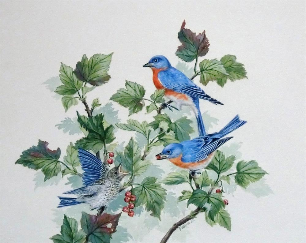 """Eastern Bluebirds with fledgling"" original fine art by Jean Pierre DeBernay"