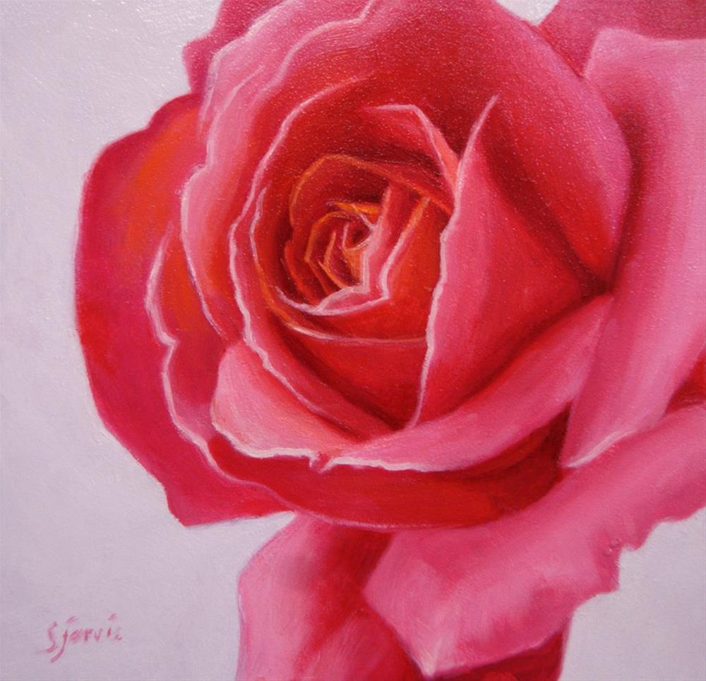 """Deep Rose"" original fine art by Susan N Jarvis"