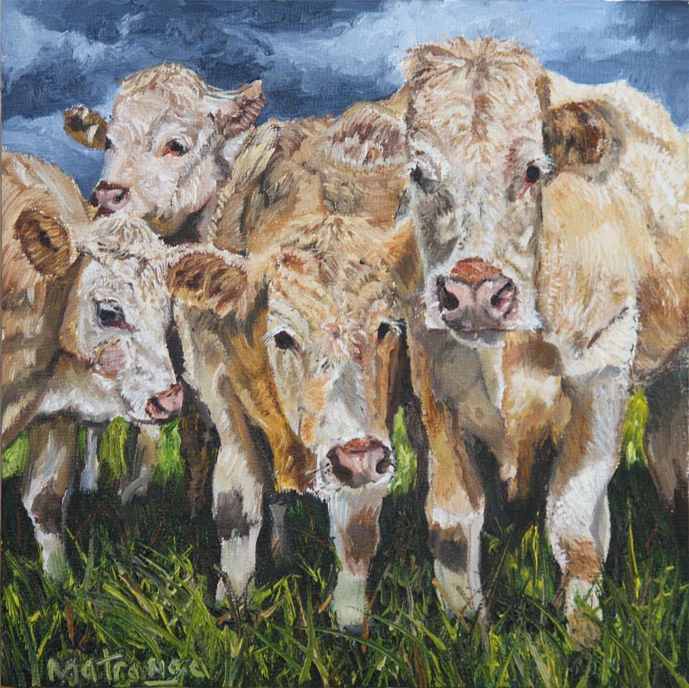 """""""Curious Cows"""" original fine art by Patricia Matranga"""