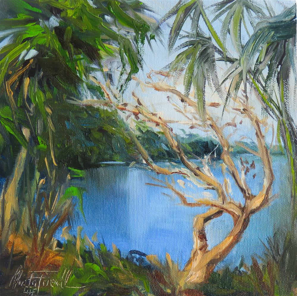 """Myakka River II"" original fine art by Christa Friedl"