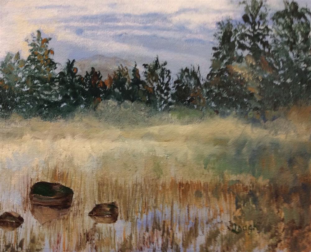 """Misty Marsh"" original fine art by Charlotte Lough"