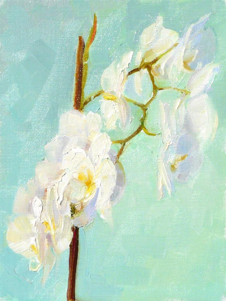 """White Orchid,still life,oil on canvas,12x9,priceNFS"" original fine art by Joy Olney"