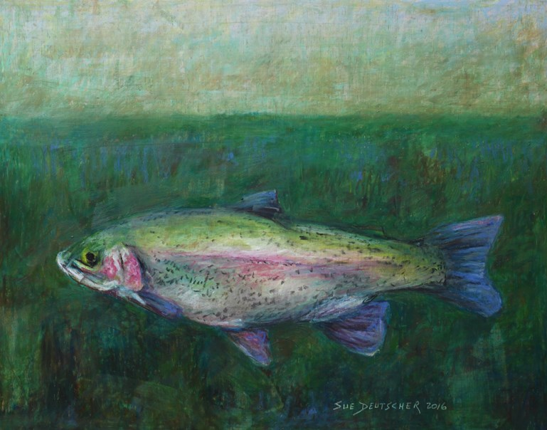 """Rainbow Trout"" original fine art by Sue Deutscher"