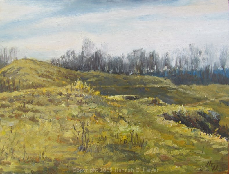 """April Wilderness"" original fine art by Hannah C. Heyer"