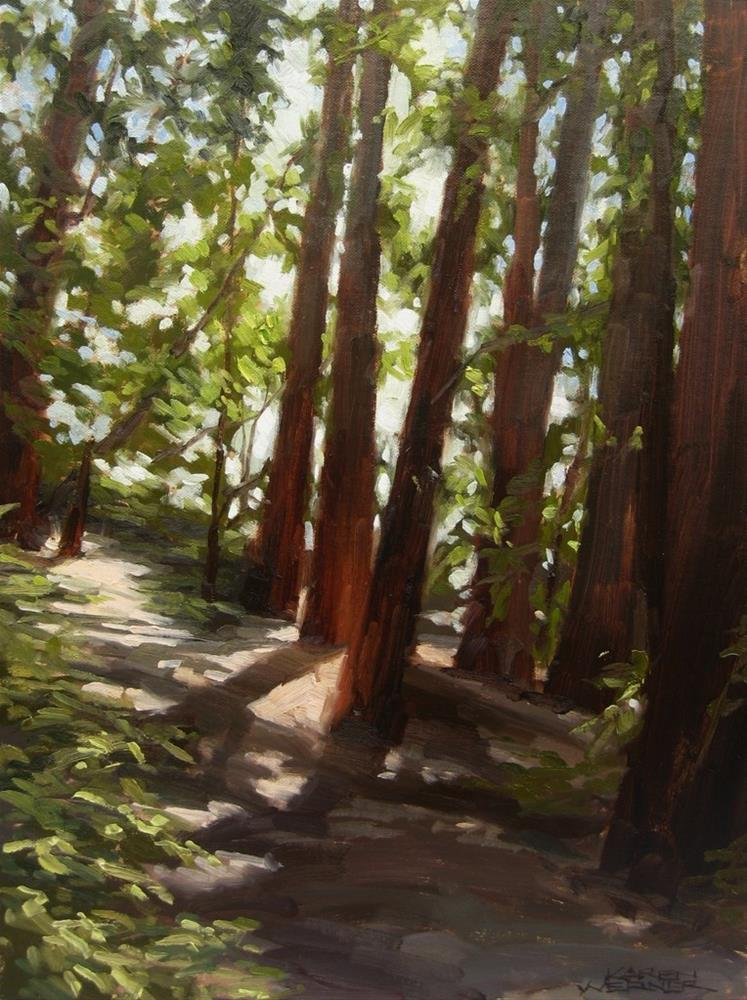 """Redwood Shadows"" original fine art by Karen Werner"